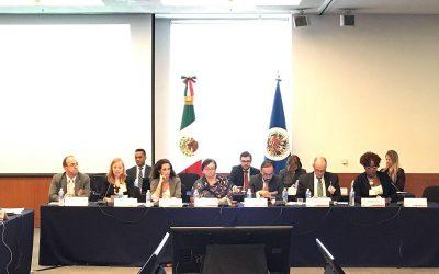 Ana Figueroa expone en el Consejo Anual de CICAD/OEA en México